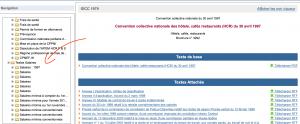 Exemple recherche salaire minimum conventionnel - Juri-Dico.fr1