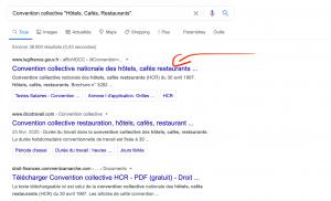 Exemple recherche salaire minimum conventionnel - Juri-Dico.fr
